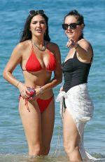 HAILEE LAUTENBACH in Bikini on the Beach in Maui 11/19/2018