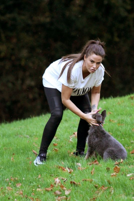 KATIE PRICE Trains Her Dog at a Park in Brighton 11/25/2018