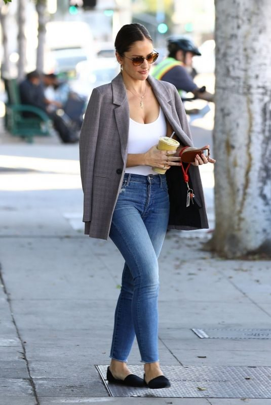 MINKA KELLY Out for Smoothie in Los Angeles 11/14/2018