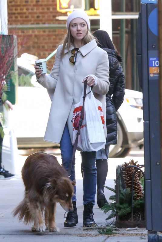 AMANDA SEYFRIED Out with Her Dog in New York 12/07/2018