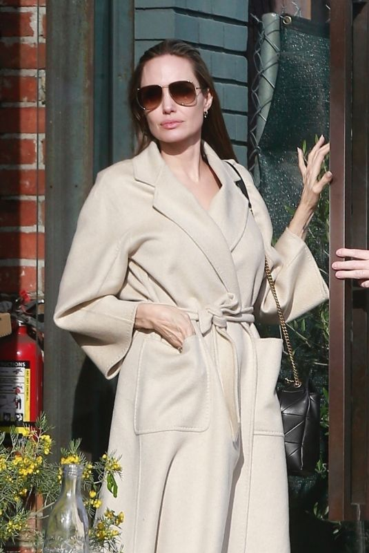 ANGELINA JOLIE Out Shopping in Santa Monica 12/22/2018