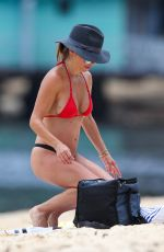 ADA NICODEMOU in Bikini at a Beach in Sydney 01/16/2019