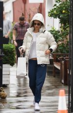 ALESSANDRA AMBROSIO Out Shopping in Los Angeles 01/16/2019