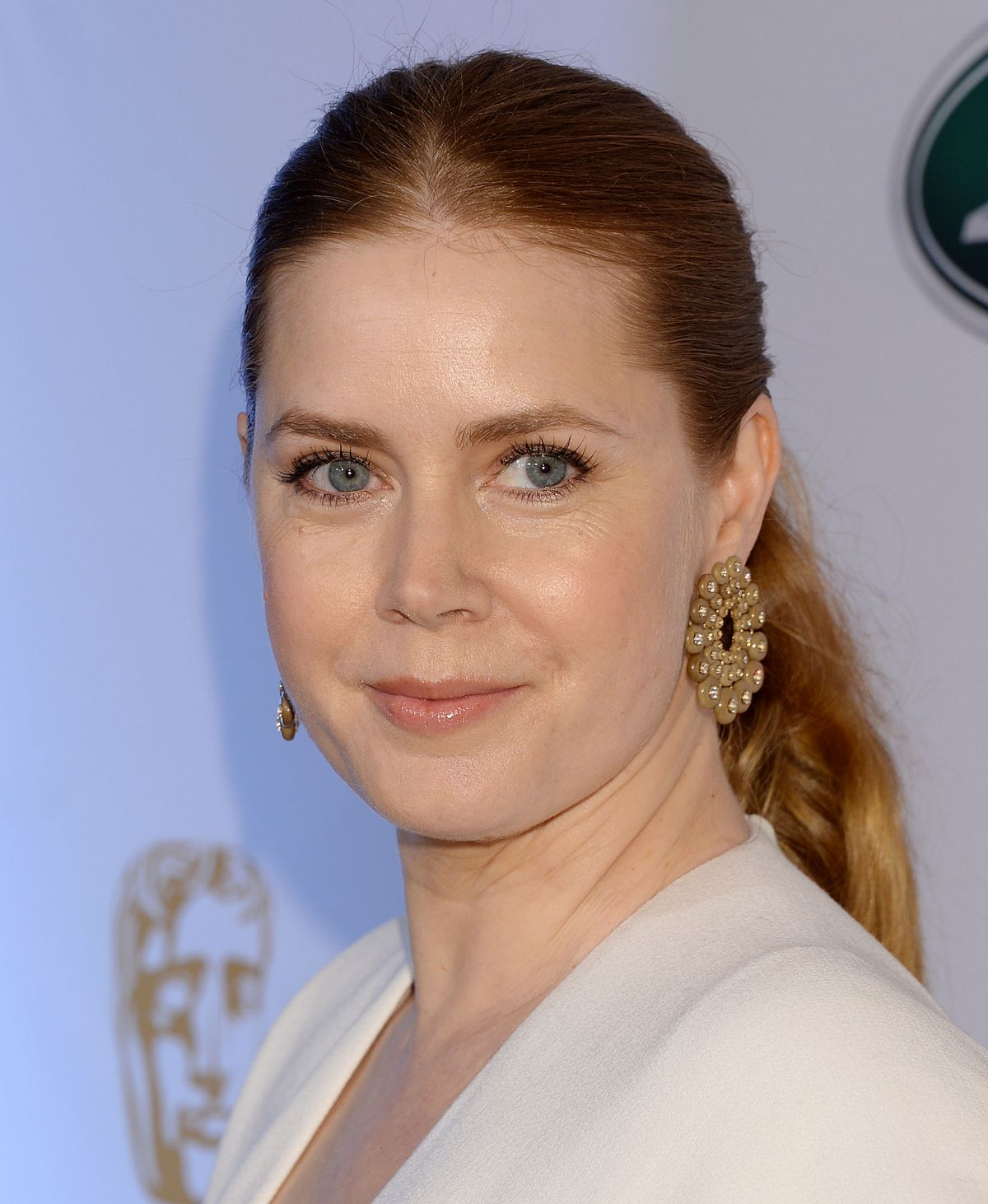 amy adams - photo #33