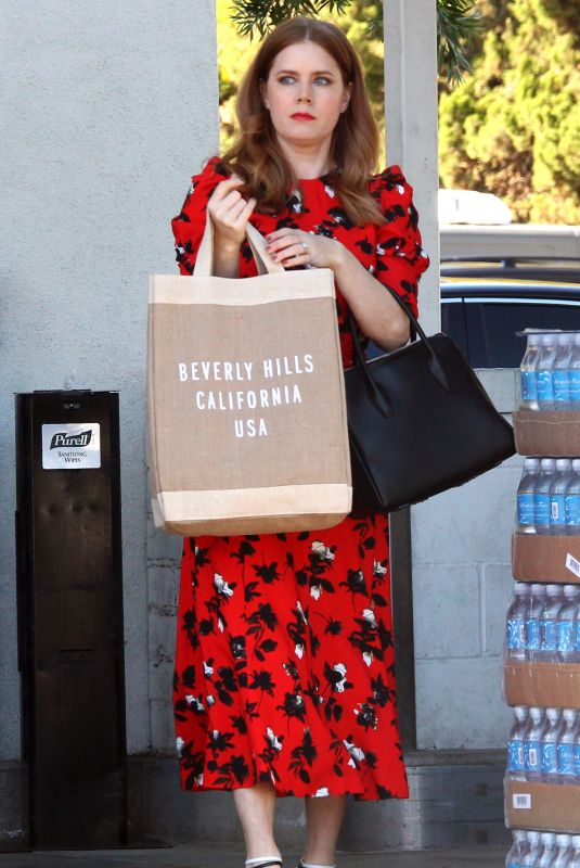 AMY ADAMS Shopping for Sushi and Veggies in Beverly Hills 01/23/2019