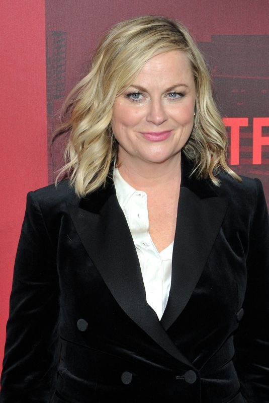 AMY POEHLER at Russian Doll Premiere in New York 01/23/2019