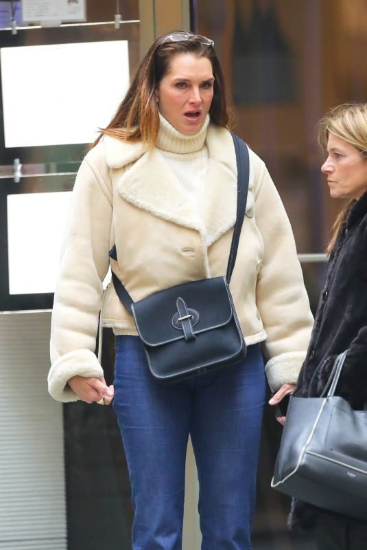 BROOKE SHIELDS Out and About in New York 01/17/2019