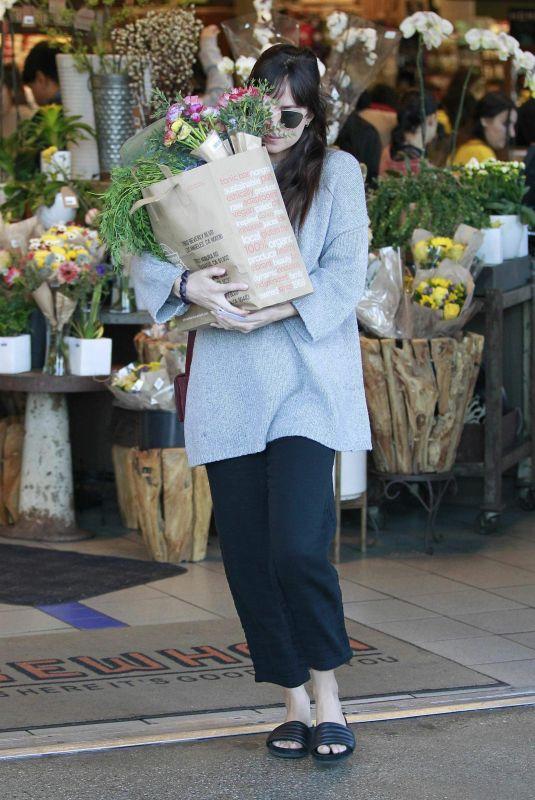 DAKOTA JOHNSON Out Shopping in West Hollywood 01/06/2019