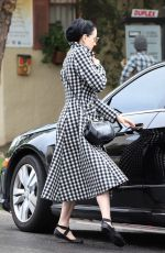 DITA VON TEESE at Yoga Class in Los Angeles 01/15/2019