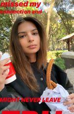 EMILY RATAJKOWSKI - Instagram Pictures 01/04/2019