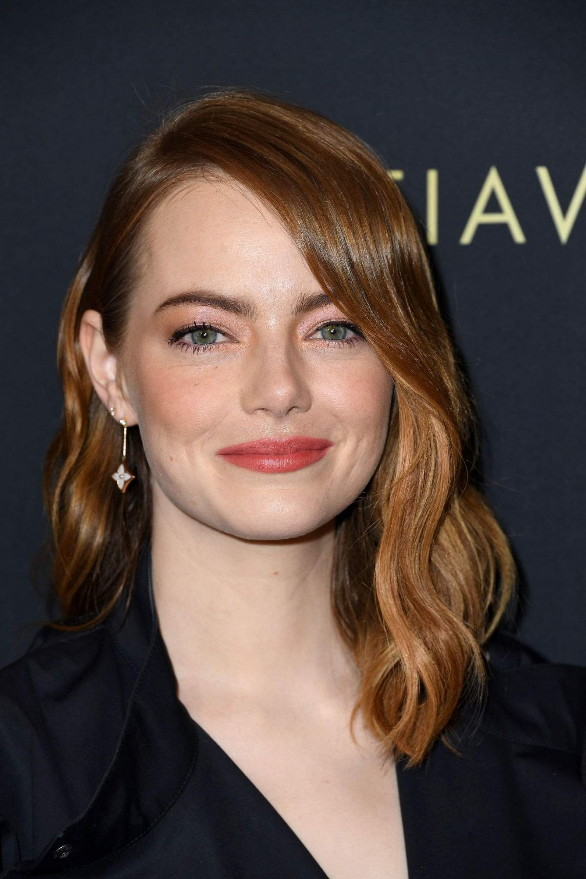 2019 Marble Printed Handle 10pcs Makeup Brushes Set: EMMA STONE At 2019 American Film Institute Awards In