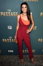 EMMANUELLE CHRIQUI at The Passage Premiere in Santa Monica 01/10/2019