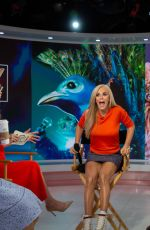 JENNY MCCARTHY at Today Show 01/23/2019