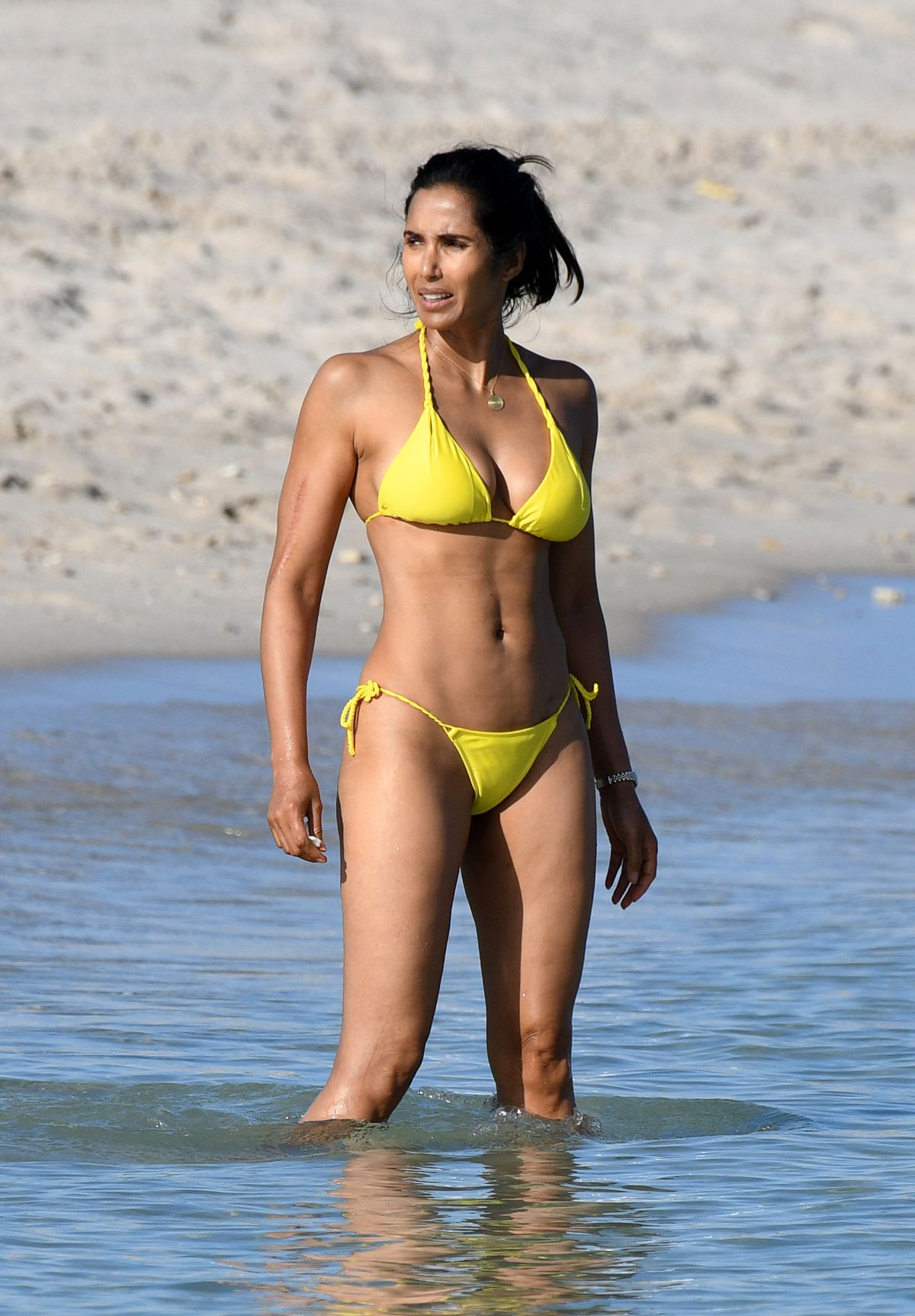 ICloud Padma Lakshmi naked (41 foto and video), Sexy, Is a cute, Boobs, swimsuit 2020