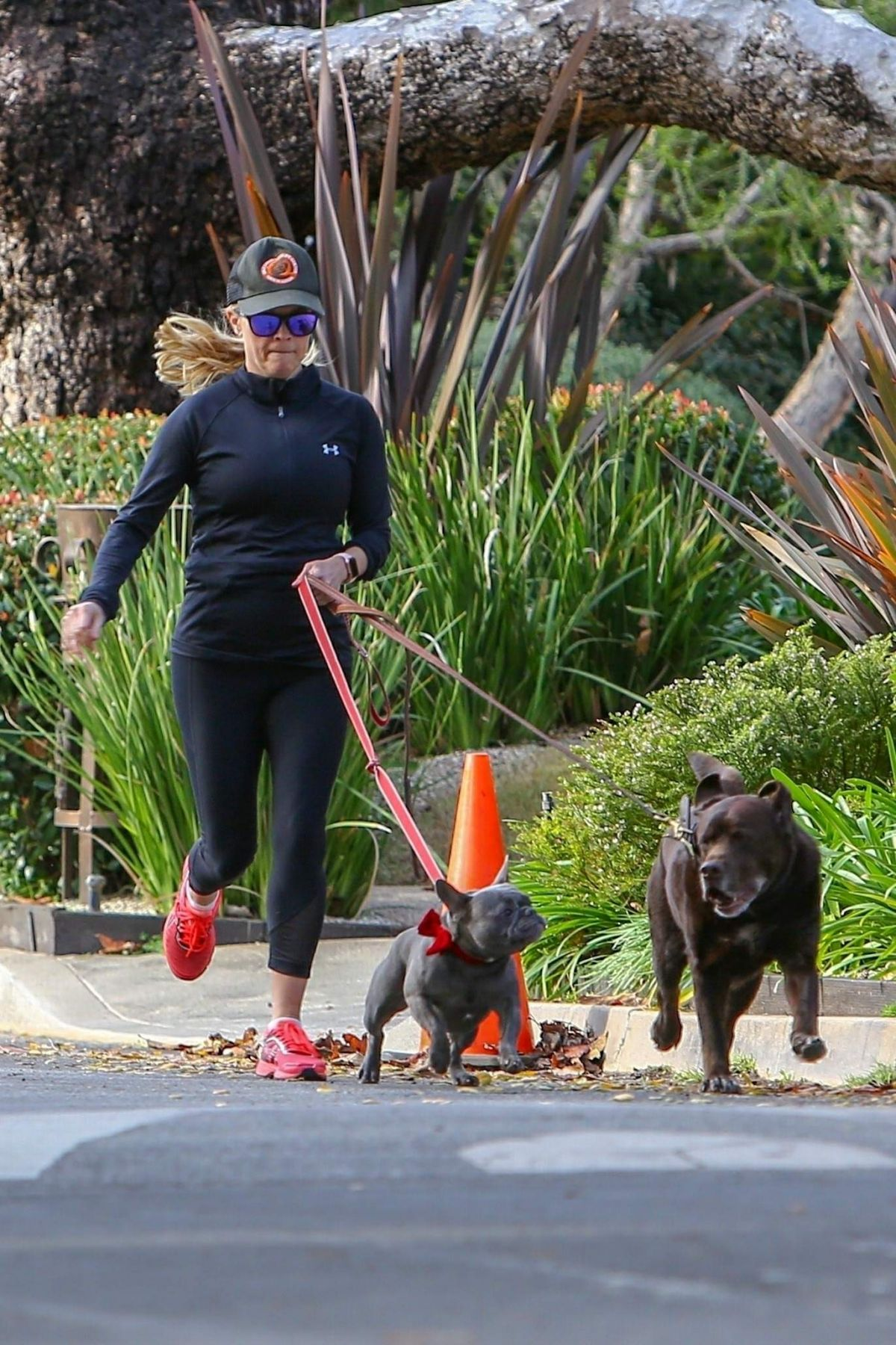 01 13 15 Today S Card Was Drawn From The Archangel Power: REESE WITHERSPOON Out Jogging With Her Dogs In Santa