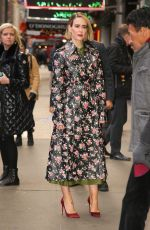 SARAH PAULSON Out and About in New York 01/17/2019