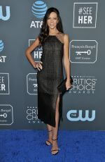 TERRI SEYMOUR at 2019 Critics' Choice Awards in Santa Monica 01/13/2019