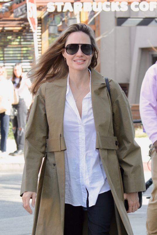ANGELINA JOLIE Out and About in Los Angeles 02/16/2019