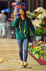 ASHLEY GREENE Out for Grocery Shopping in Los Angeles 02/05/2019
