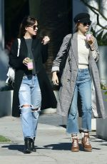 DAKOTA JOHNSON and STELLA BANDERAS Out in West Hollywood 02/06/2019