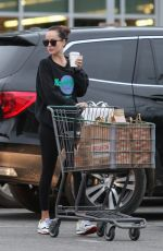 DAKOTA JOHNSON Out Shopping in Los Angeles 02/01/2019