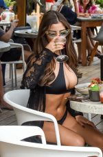 DEMI ROSE MAWBY in Bikini Out for Lunch in Tulum 01/14/2019