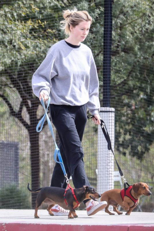 IRELAND BALDWIN Out with Her Dogs in Santa Monica 02/15/2019