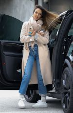 JESSICA ALBA Out Shopping in Los Angeles 02/01/2019