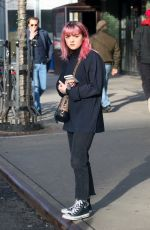 MAISIE WILLIAMS Out in New York 02/11/2019