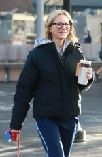 NAOMI WATTS Our in New York 02/04/2019