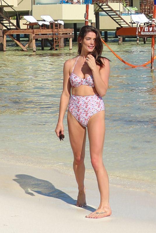 ASHLEY GREENE in Bikini on Vacation in Mexico 03/26/2019