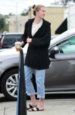 IRELAND BALDWIN Out Shopping in Studio City 03/23/2019