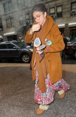 SARAH HYLAND Arrives at Her Hotel in New York 03/01/2019