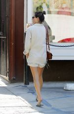 ALESSANDRA AMBROSIO Out Shopping in Brentwood 04/09/2019