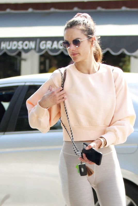 ALESSANDRA AMBROSIO Shopping Flowers Out in Brentwood 04/01/2019