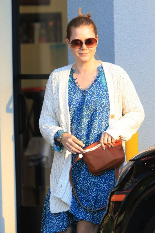 AMY ADAMS Out in Los Angeles 04/18/2019