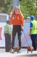 IRELAND BALDWIN Out with Her Dogs in Los Angeles 04/11/2019