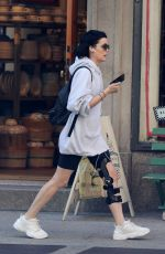 JAIMIE ALEXANDER Out and About in New York 04/24/2019