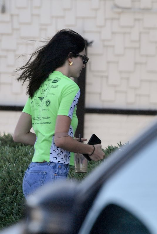 KENDALL JENNER Out in Los Angeles 04/09/2019