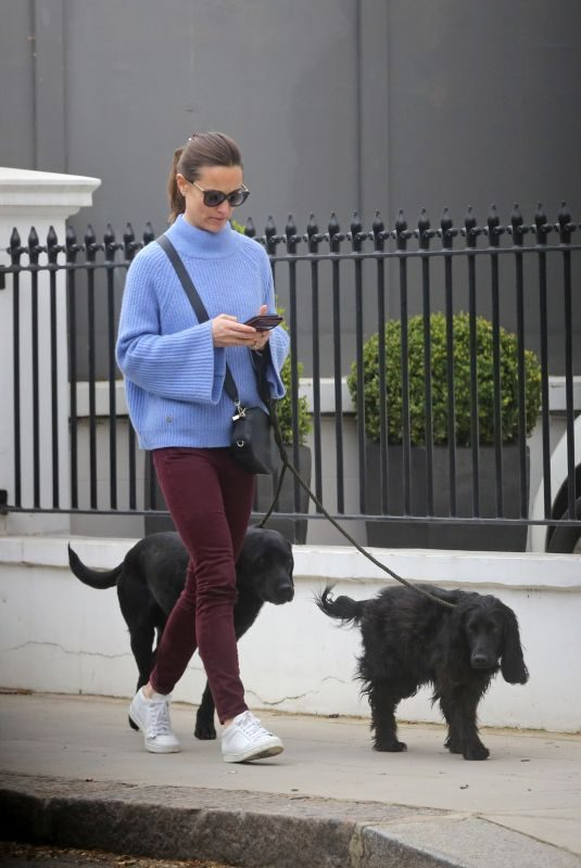 PIPPA MIDDLETON Out with Her Dogs in London 03/29/2019
