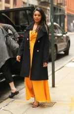 REGINA HALL Out in New York 04/11/2019
