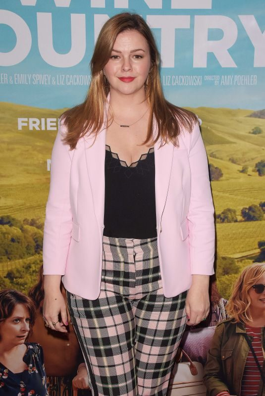 AMBER TAMBLYN at Wine Country Premiere in New York 05/08/2019