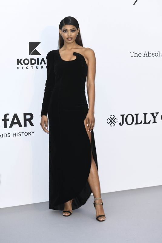 DANIELLE HERRINGTON at Amfar Cannes Gala 2019 05/23/2019
