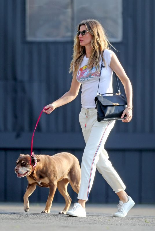 GISELE BUNDCHEN Out with Her Dog in New York 05/19/2019