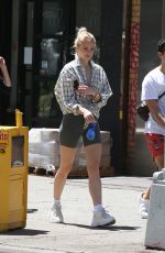 SOPHIE TURNER and Joe Jonas Out with Their Dogs in New York 05/18/2019