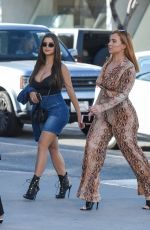 DEMI ROSE MAWBY Out for Lunch in Beverly Hills 06/09/2019