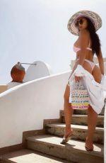 NICOLE SCHERZINGER in Bikini on Vacation in Capri 06/19/2019