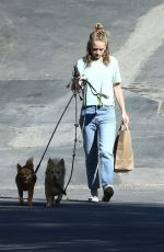 BRITT ROBERTSON Out with Her Dogs in Los Angeles 07/23/2019