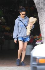 EMMANUELLE CHRIQUI in Denim Shorts Out in Los Angeles 07/04/2019