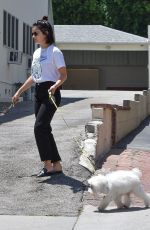 LUCY HALE Out With Her Dog Elvis in Los Angeles 07/19/2019